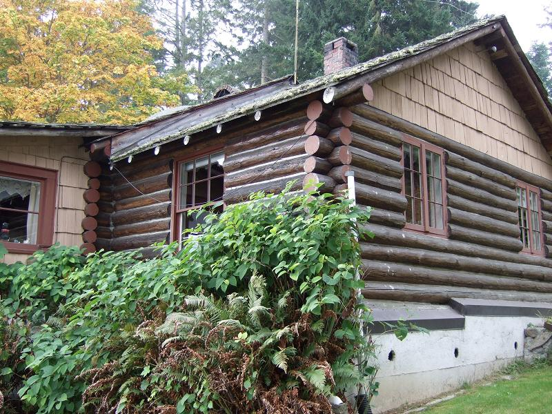 Waterfront Log Cabin On Beautiful Whidbey Island. Exterior ...