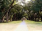 Oak Alley Plantation image