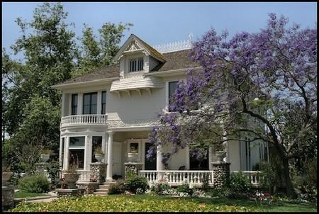1890 Historic Home photo