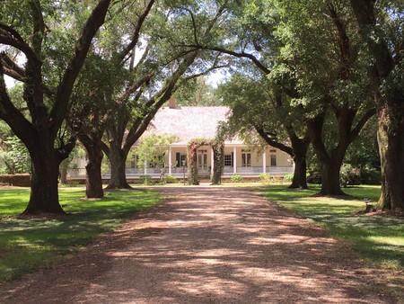 1800 Plantation photo