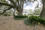 Own one of Louisiana's Most Majestic Historic Homes-The Dubuisson Home